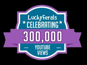 300000 YouTube Views Milestone