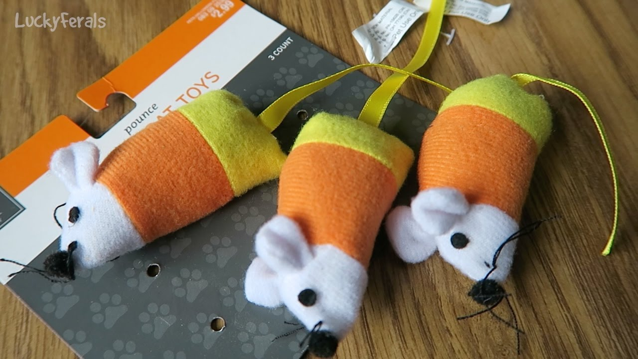 cats play with halloween candy corn mice cat toys - lucky ferals