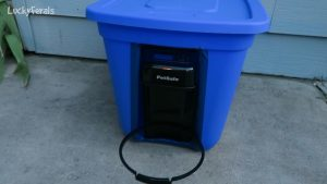 Raccoon Proof Feral Cat Feeder Setup