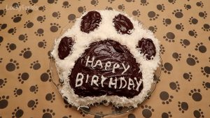 Cat Paw Print Cake - Wilton Pan And Recipe