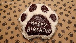 Cat Paw Print Cake - Wilton Pan And Recipe