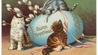 Happy Easter Greetings from The Lucky Ferals!