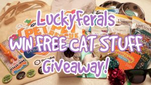 Lucky Ferals Win FREE Cat Stuff Giveaway!