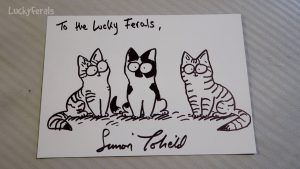 Simon's Cat Artist Simon Tofield Drew The Lucky Ferals! - Amazing Cat Drawing :)