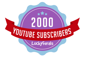 YouTube Subscribers Milestone