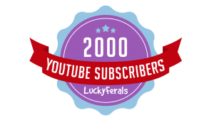 Celebrating 2000 Subscribers On The Lucky Ferals YouTube Channel