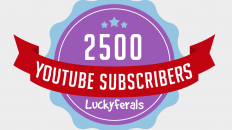 2500 YouTube Subscriber Milestone