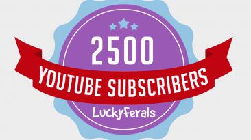 2500 YouTube Subscriber Milestone