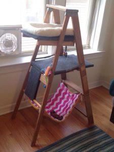 Cat Tree Ladder