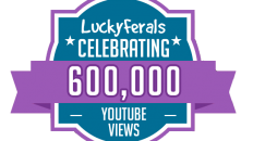 YouTube Views Milestone 600K