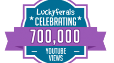 YouTube Views Milestone 700K