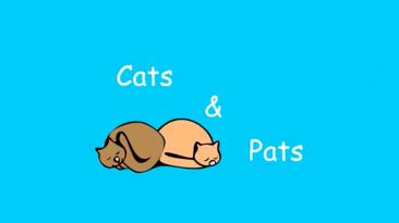 cats and pats