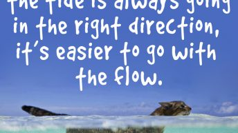If we trust that the tide is always going in the right direction, it's easier to go with the flow.