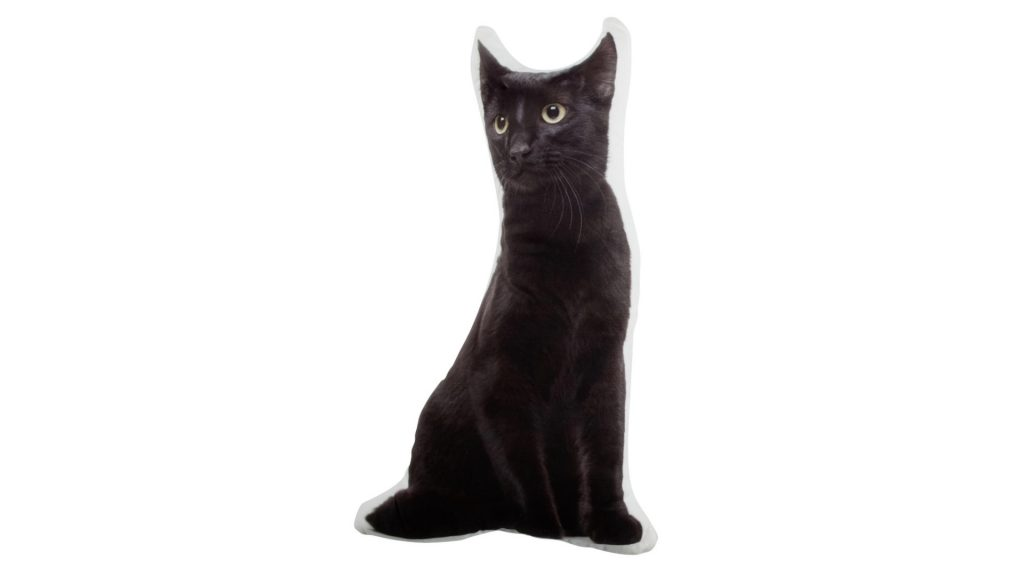 black cat boo pillow giveaway