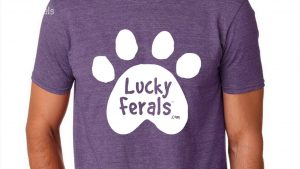 Win A Free Lucky Ferals T-Shirt! It's Day 1 of the 12 Days Of Catmas!