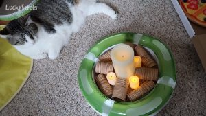 How To Make An Indoor Campfire For Cats Or Kids - DIY