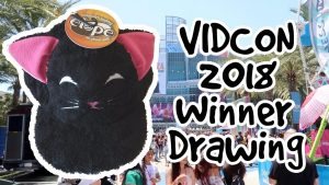 Vidcon 2018 Giveaway Winner Drawing