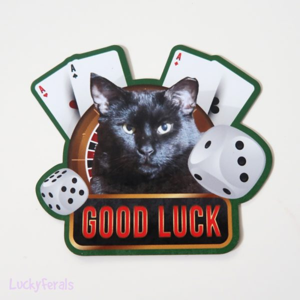 Good Luck Black Cat Magnet