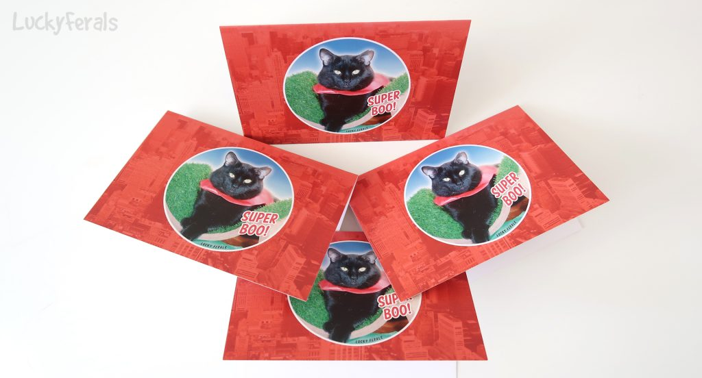 Super Boo Notecards
