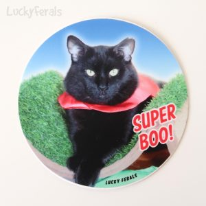 Super Boo Sticker