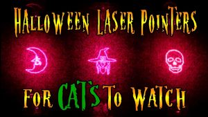 Halloween Laser Pointer Video For Cats To Watch - Video Game For Cats