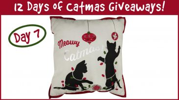 12 Days Of Catmas Day 7 Pillow