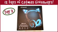 12 Days Of Catmas Day Two Headphones