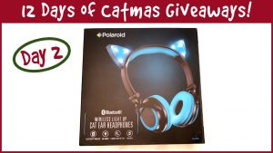 Win a Pair of Wireless Light Up Cat Ear Headphones! It's Day 2 of the 12 Days of Catmas Giveaways!