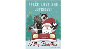 Peace, Love and Joyrides! Merry Christmas from the Lucky Ferals!