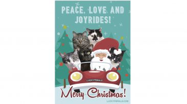Peace Love And Joyrides Christmas