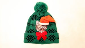 Ugly Cat Hat