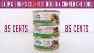 Stop & Shop's Cheapest Healthy Canned Cat Food - Nature's Promise Cat Food Review