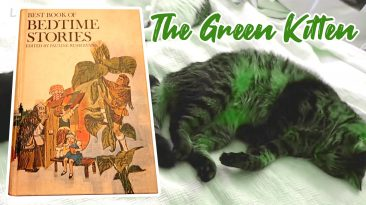 the green kitten