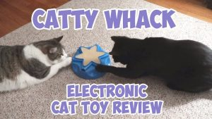 Catty Whack Electronic Cat Toy Review - OurPets