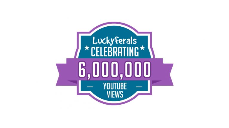 YouTube 6M Views Milestone