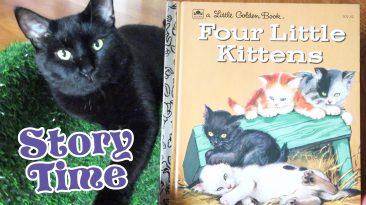 Four Little Kittens Little Golden Book