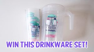 Enter To Win A Set Of Cat Themed Summer Drinkware!