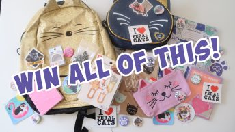 Enter To Win The Lucky Ferals Back To School, Back To Work, Back To Anywhere Giveaway 2019!