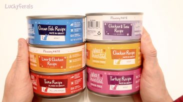 Wholehearted Cat Food