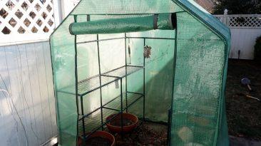 mini walk in greenhouse