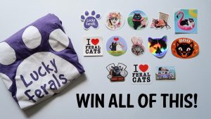 Win The Lucky Ferals' 4 Year Channelversary Giveaway!