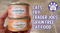 trader joe's grain free cat food
