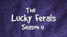 Lucky Ferals Season 4