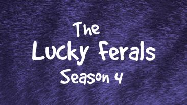Lucky Ferals Season 4